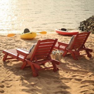 Chaise Lounge - SRCL1 - nature